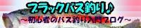 ブラックバス釣り♪ 〜初心者のバス釣り入門ブログ〜